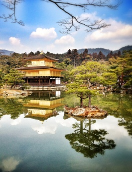 The Golden Pavilion -- like a painting